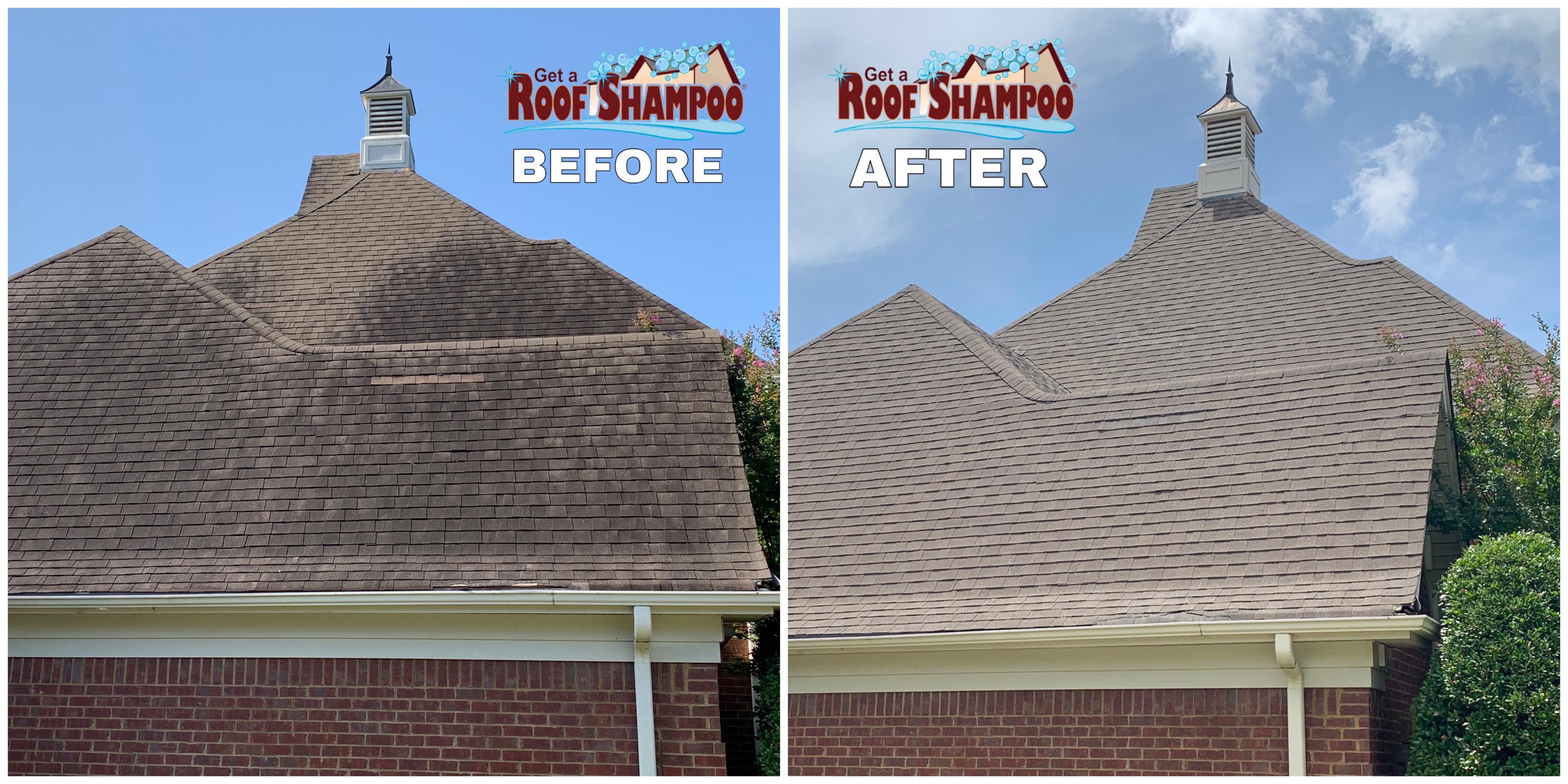 Roof Shampoo